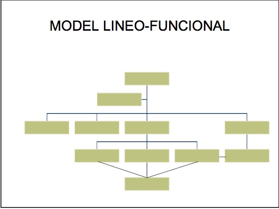 Modelo lineo-funcional